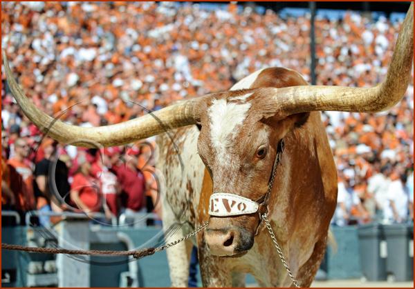 Red River Rivalry Texas vs Oklahoma